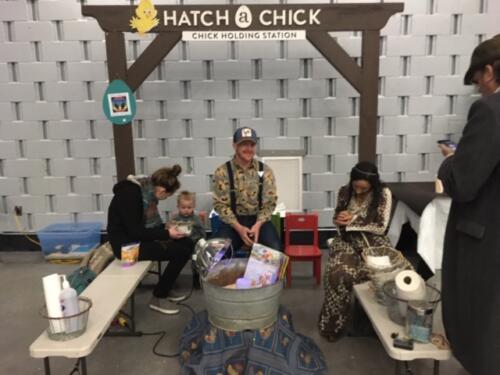 IMG_5141.JPG Hatch a Chick
